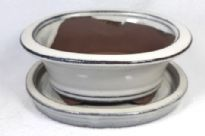 Bonsai Pot, Oval (H), 15cm, Cream, Glazed, Saucer